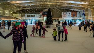 21st Annual Winter Ice Palace @ Cloverdale Ice Arena