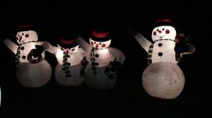 Christmas in Williams Park @ Williams Park | Langley | British Columbia | Canada
