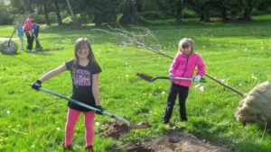 Neighbourhood Tree Care Parties @ Hazelgrove Park