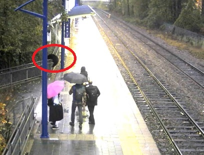 What would you do if you saw a Bear on Translink?!?