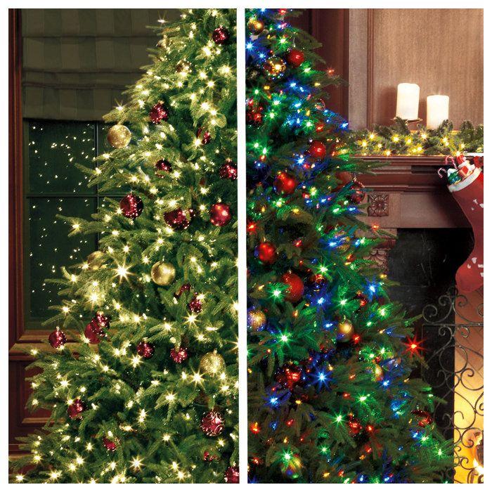 White lights or multi coloured lights?