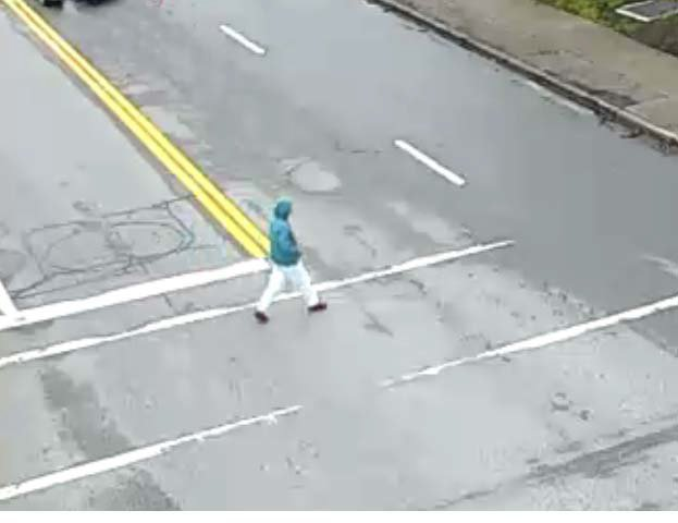 UPDATE- she has been identified. Surrey RCMP need help identifying a pedestrian that was struck.
