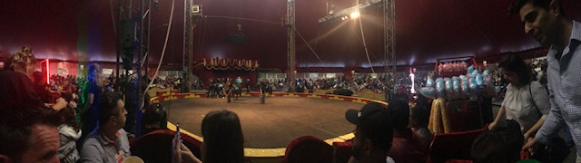 The Circus You Have To See