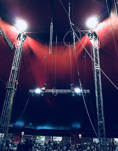 Bringing MY circus to the circus