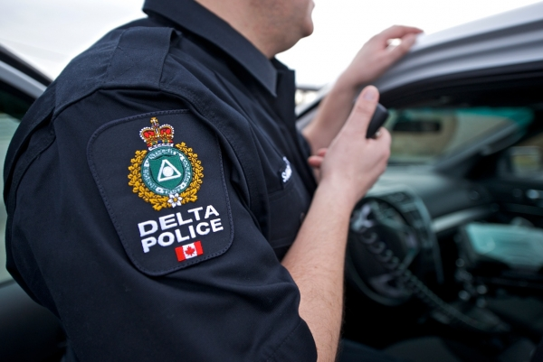 Delta man charged after allegedly punching Tsawwassen youth