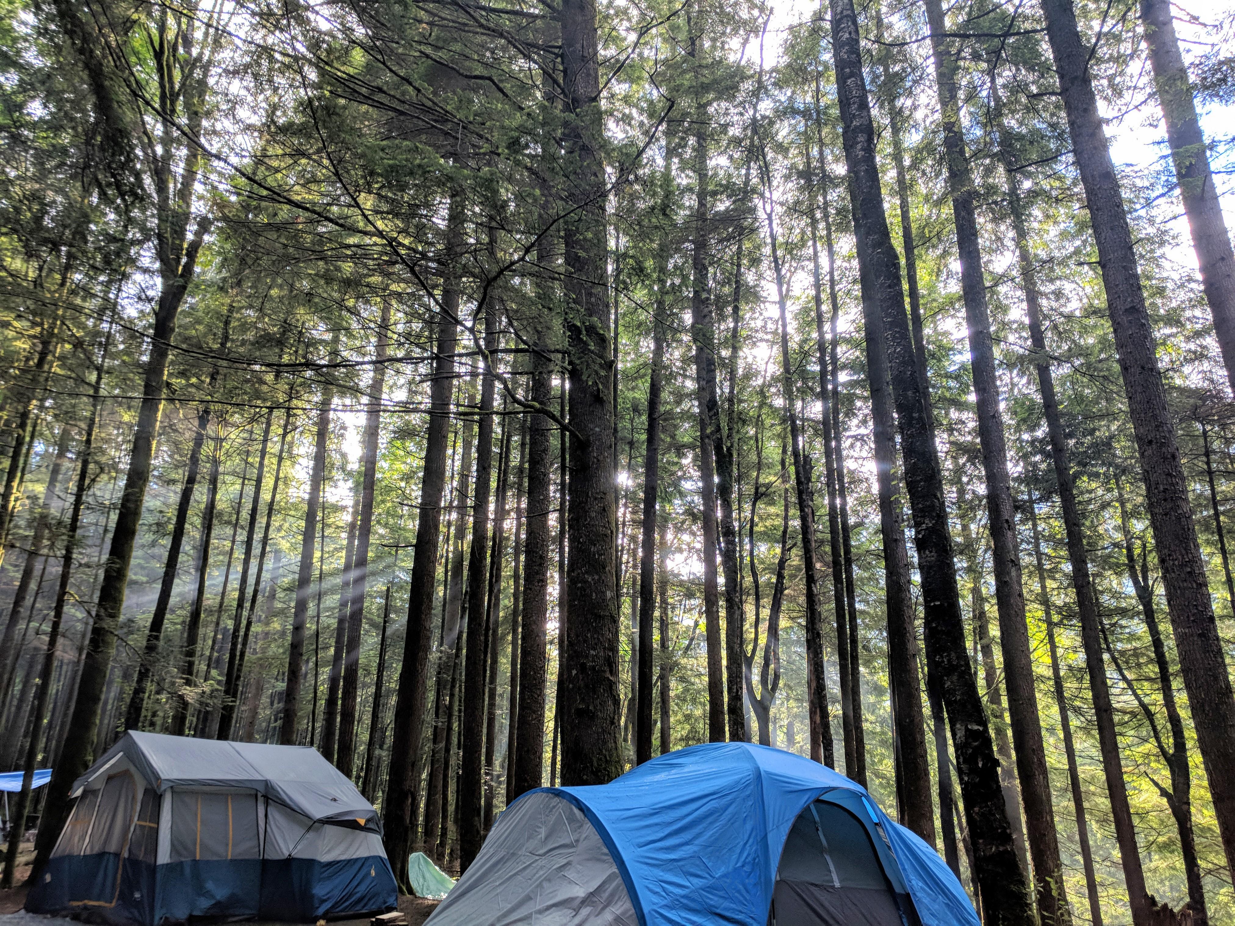 Camping Season is here (?!)