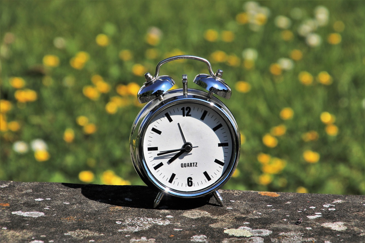 Record response to Daylight Saving Time Survey