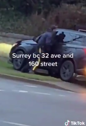 Surrey RCMP & Driver Fight Viral Video