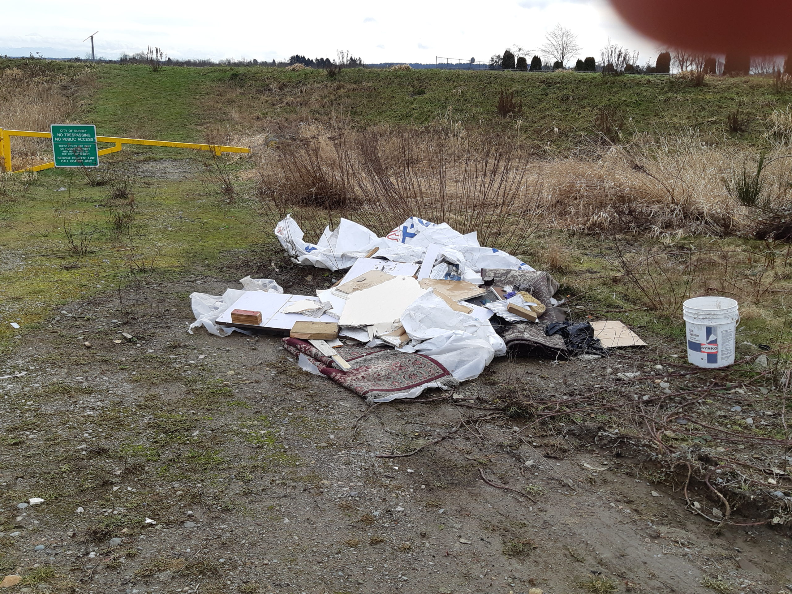 City grapples with illegal dumping