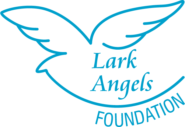 The Lark Angels Foundation's 5th Annual Black Tie Gala Fundraiser is on September 24th